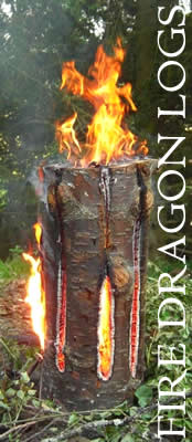 Fire Dragon Logs - a vertical campfire log